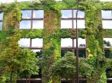 corso di architettura verde a san venanzo terni life